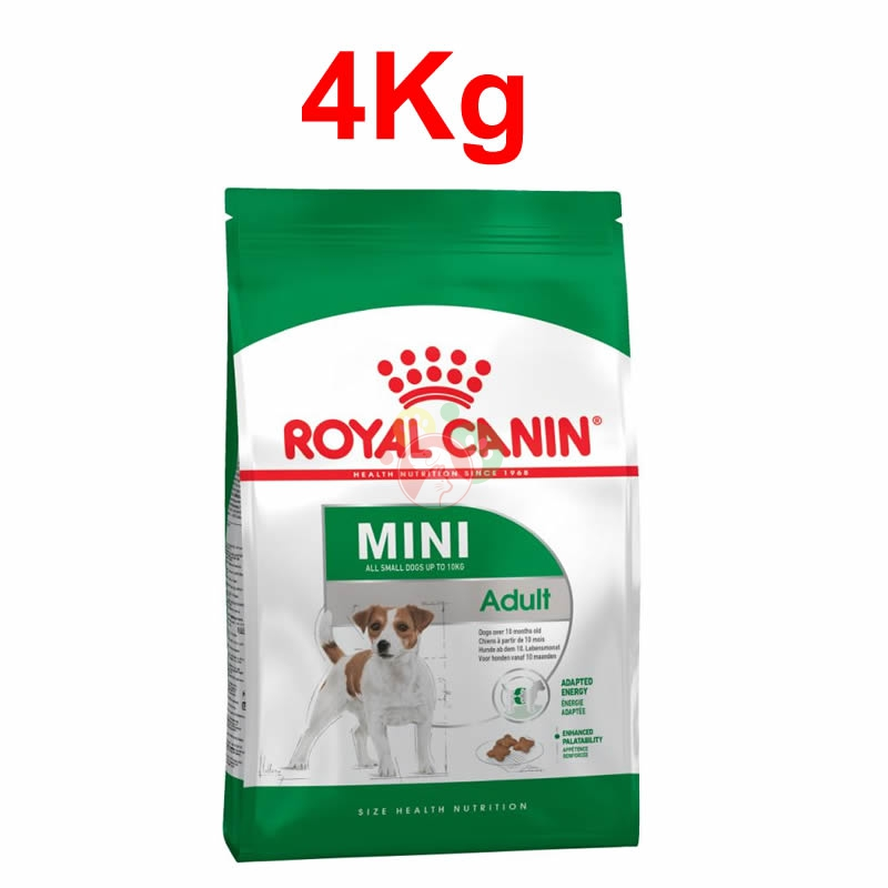 Royal Canin Mini Adult Crocchette Da 4Kg Cani Adulti